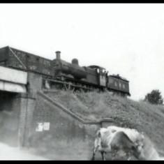Goods train approaching Heath Park Halt, Hemel Hempstead, 1948, with cows in the road below. | © unknown