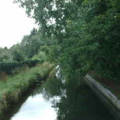 Cheshunt, looking downstream towards College Rd | Nicholas Blatchley