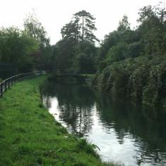 Broxbourne, looking downstream | Nicholas Blatchley