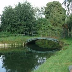 Broxbourne, looking upstream | Nicholas Blatchley