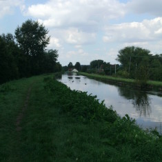 Upstream from Rye House | Nicholas Blatchley