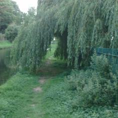 Upstream from Ware   Nicholas Blatchley