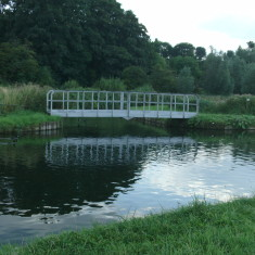 Confluence of the streams from New Gauge & Chadwell Springs   Nicholas Blatchley