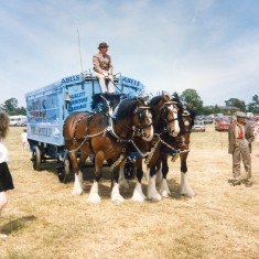Shire horses pulling Abels 'Quality Furniture Carriage'   Anne MacDonald