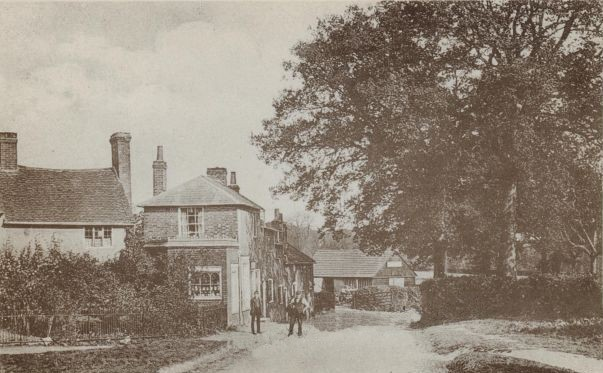 Ayot Green c. 1905. The Smithy can be seen in the background.