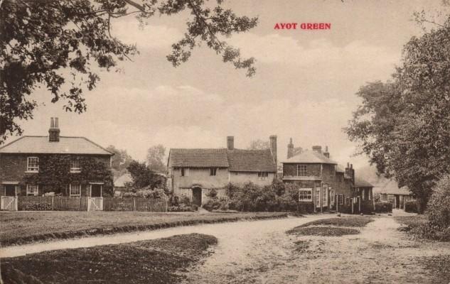 Ayot Green around 1905