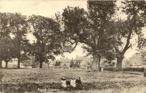 Ayot Green c.1910