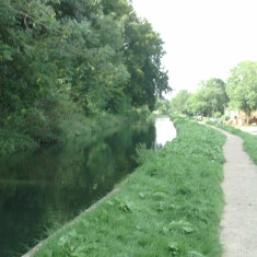 Looking upstream from St Margarets to Great Amwell | Nicholas Blatchley