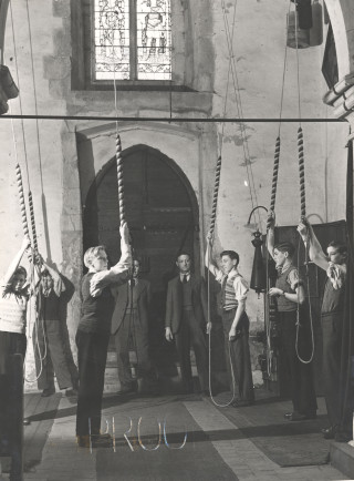 Bell-ringers ringing in St Leonard's church b&w photo | Hertfordshire Archives and Local Studies [CV/FST/11]