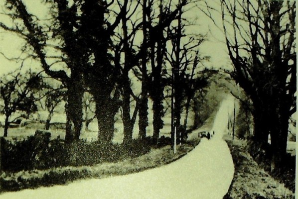 At the midway 'dip' between Goffs Oak and Cuffley, 1925 | Iain Bickerton