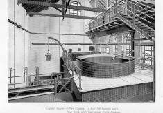 The Brewing and Malting Processes