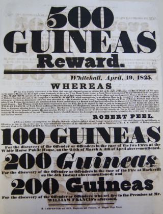 Poster offering 500 guineas reward | Hertfordshire Archives and Local Studies