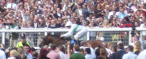 Camelot; winner of the Derby
