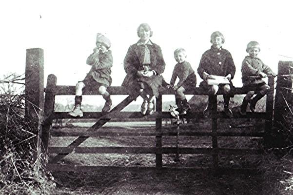 The Dunckley Children   Geoff Webb