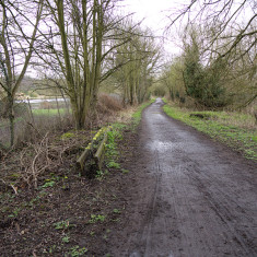 The trackbed alongside the River Colne anear Oxhey. March 2010. | © St Albans Museums