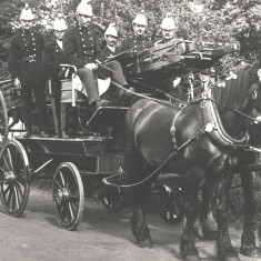 The Fire Brigade | Hertfordshire Archives & Local Studies