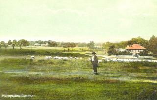 Hertfordshrie Archives and Local Studies
