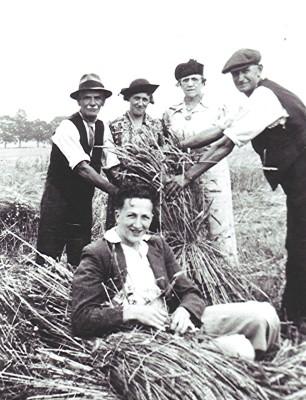 A Harvest Scene | Geoff Webb