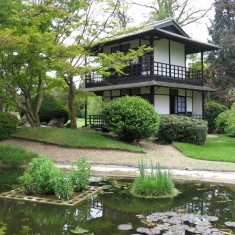 The Japanese tea house next to Fox Lake | Fiona MacDonald