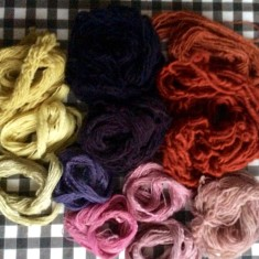 Yarns dyed with Cochineal, Logwood, Brazilwood and Weld