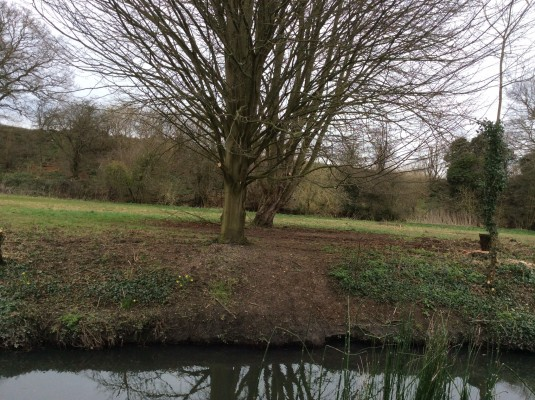 Last year view from my back garden of the River Beane