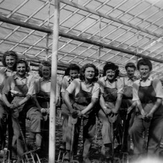 Land Girls at Hammond Street Nurseries | Local Studies Image Collection