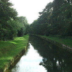 Looking downstream from the St Laurence Drive Bridge | Nicholas Blatchley