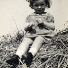 Margeurite in 1942, age 2 years, on top of a haystack | Margeurite Johnson