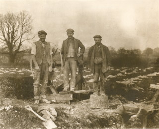 Workers at Rothamsted