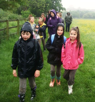 Brownies walking home | by Tracey Fitzgibbons