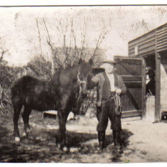 Uncle Tom at The Nook stables | Gary Moyle