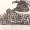 "135 Field Regiment, Herts Yeomanry , ""F"" Troop"