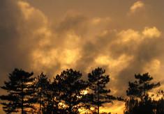 Spirella Sunsets
