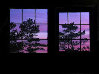Sunset tree windows   (06/03/10) | Simon Webster (shaggy359)