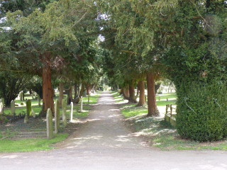 A tree-lined walk in one of the Cemetery Road cemeteries. | © Richard Brockbank 2010