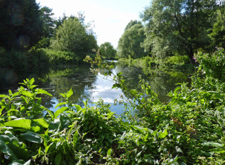 This is an exceptionally pretty bend in the river, close to Rushy Mead. | © Richard Brockbank 2010