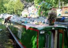 Ware Boat Festival 2013