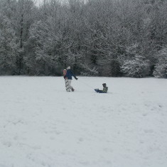 Boxmoor Golf Club 2009 | Ian Phipps