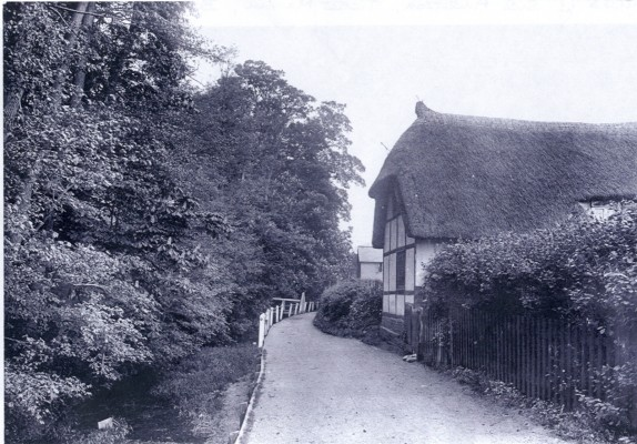 Pigs Nose thatched cottage | Hertfordshire Archives & Local Studies
