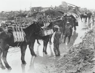 Horses carrying ammunition