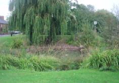 Weston Pond