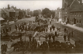 St Albans Market early 20th century | The Museum of St Albans