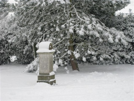 Great St Marys churchyard, Sawbridgeworth   Susi Smith