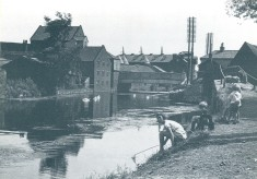 The River Lea at Ware