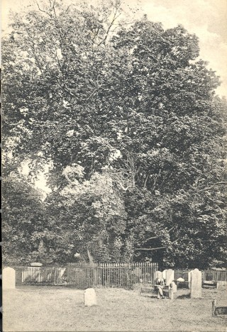 St. Peters Graveyard | Hertfordshire Archives and local studies