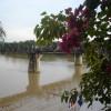 The Bridge over the Kwai