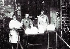 Angora Wool Workers