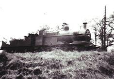 The Nicky Train