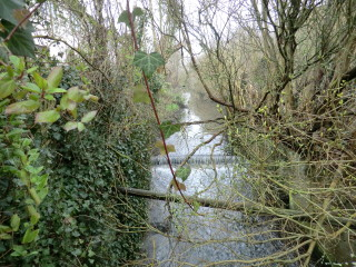 The River Beane - looking north from Mill lane, with the Lammas Field on the bank to the right. | Terry Askew