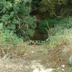 Theoblads Brook, after flowing under the New River | Nicholas Blatchley